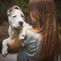 Человек собаке - ДРУГ ! :: Женя Бельковская