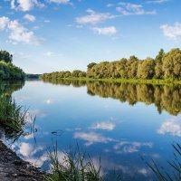 Лето у реки :: Юрий Стародубцев