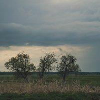 Тучи ходят хмуро. :: Evgenija Enot