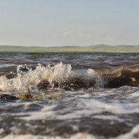 Ветер на озере. :: юрий Амосов