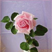 Роза для друзей,с любовью :: Лидия (naum.lidiya)