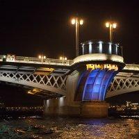 Благовещенский мост :: Карен Мкртчян