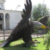 Могучий орёл совершает полёт :: Дмитрий Никитин