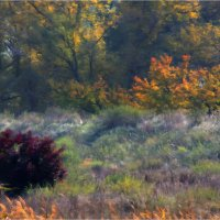 Осень в октябре :: Юрий Васильев