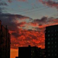 Тихий летний вечер :: Alexandr Zykov