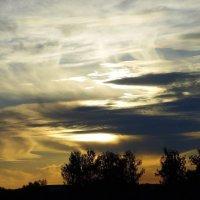 Чудеса небесные. :: nadyasilyuk Вознюк