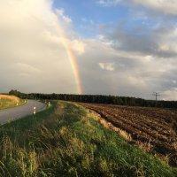 После дождика в четверг :: Johann Lorenz