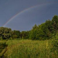 Дождь покапал и прошел :: Андрей Дворников