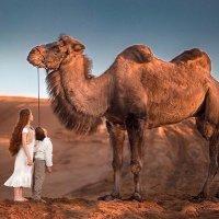 Дети Пустыни :: Юлия