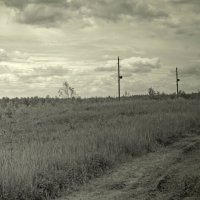 Разбитая дорога... :: Павел Зюзин