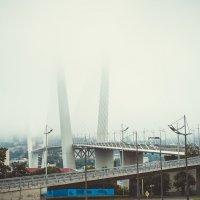 Мост, уходящий в туман... :: Арина