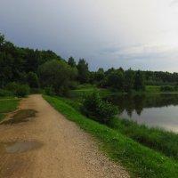 Летний вечер на пруду :: Андрей Лукьянов