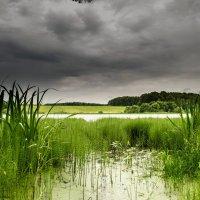 Дождливый день... :: Va-Dim ...