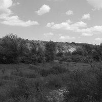 Вовчинецкие   холмы :: Андрей  Васильевич Коляскин