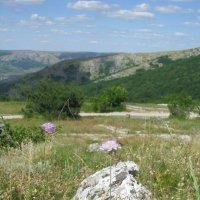 Нижнее плато г. Чатыр-Даг. Крым :: Юлия Филиппова