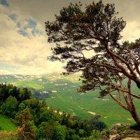 Адыгея, пейзаж. :: Игорь