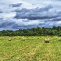 Тучи ходят хмуро, значит будет дождь. :: Zoya P.