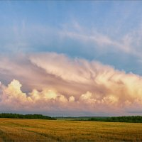 Красивый, летний вечер... :: Александр Никитинский