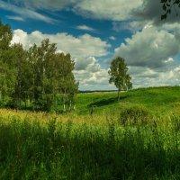 Лето в Сибире :: Владимир Деньгуб