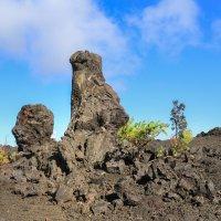 Вулканический столб в виде морды собаки, пробившийся из-под земли, Биг-Айленд, Гавайи. :: Ольга Петруша