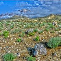 Час из жизни Горы :: Ахмед Овезмухаммедов