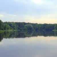 Лесное озеро :: Валерий Самородов