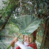 Летний дождик :: Римма Алеева