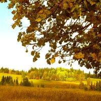 золотая осень :: леонид логинов