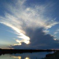 Необыкновенные облака :: Elena Dubinina