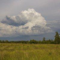 Небольшая история одного облачка Июнь 2017 :: Юрий Клишин