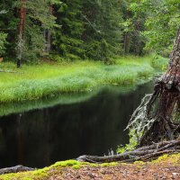 Река :: Надежда Крылова