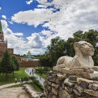 в Александровском саду :: Владимир