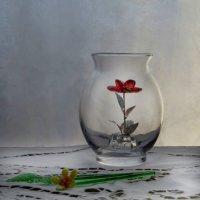 Аленький цветочек :: Наталья Джикидзе (Берёзина)
