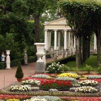 В Собственном саду :: Ирина Румянцева