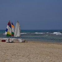 Пляжный сезон - 1 :: Оксана Пестова