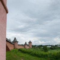 Спасо-Евфимиева мужская обитель — монастырь-крепость в Суздале :: Мария Беспалова