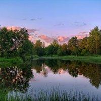Теплые краски летнего вечера :: Лара Симонова