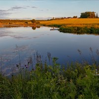Картинка деревенская, летняя, вечерняя... :: Александр Никитинский
