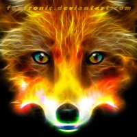 FireFox :: Andy Kloxx Foxtronic