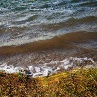Озеро Шира :: Елена Брыкова