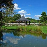 В ботаническом саду... :: Galina Dzubina