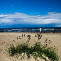 Пляж в Юрмале :: Alena Cyargeenka