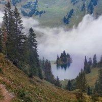 островок-кораблик парит в тумане :: Elena Wymann