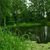 озеро :: petyxov петухов