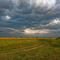"""Из цикла """"Дороги Черноземья"""" :: Laborant Григоров"""