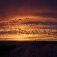 Закатное небо :: Виталий Павлов