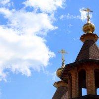 храм всех скорбящих радость г. Губкин... :: Анна Шишалова