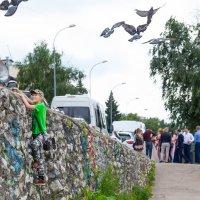 Полет с птицами :: Роман Царев