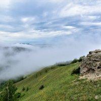 Горы в тумане. :: Елена Савчук