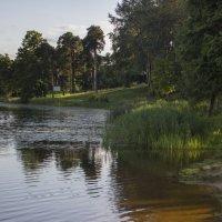 Берег реки :: Вера Аксёнова